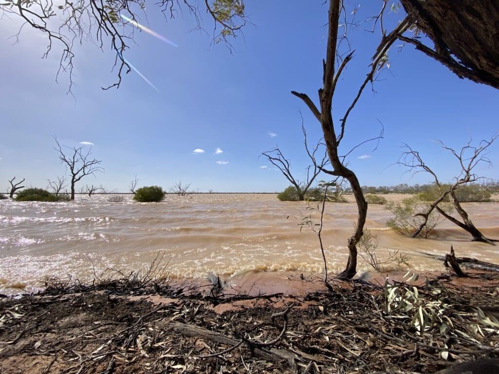 The shoreline of Lake Pinaroo, Sturt National Park NSW.