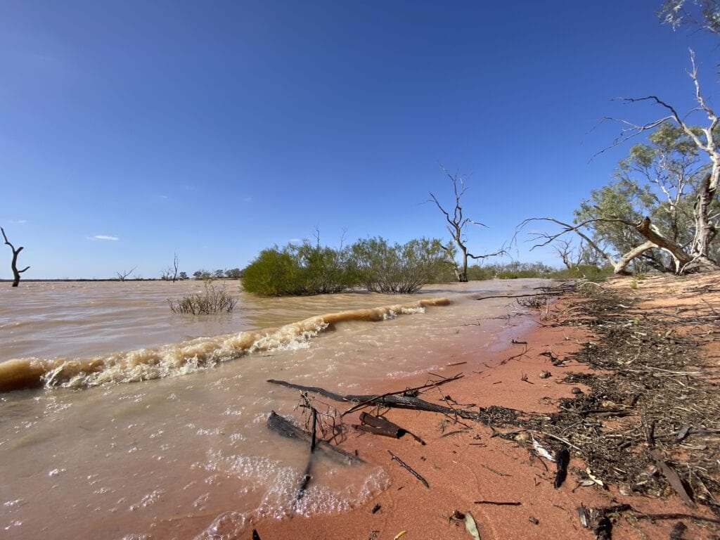 The red sand at the shoreline of Lake Pinaroo in Sturt National Park, NSW.