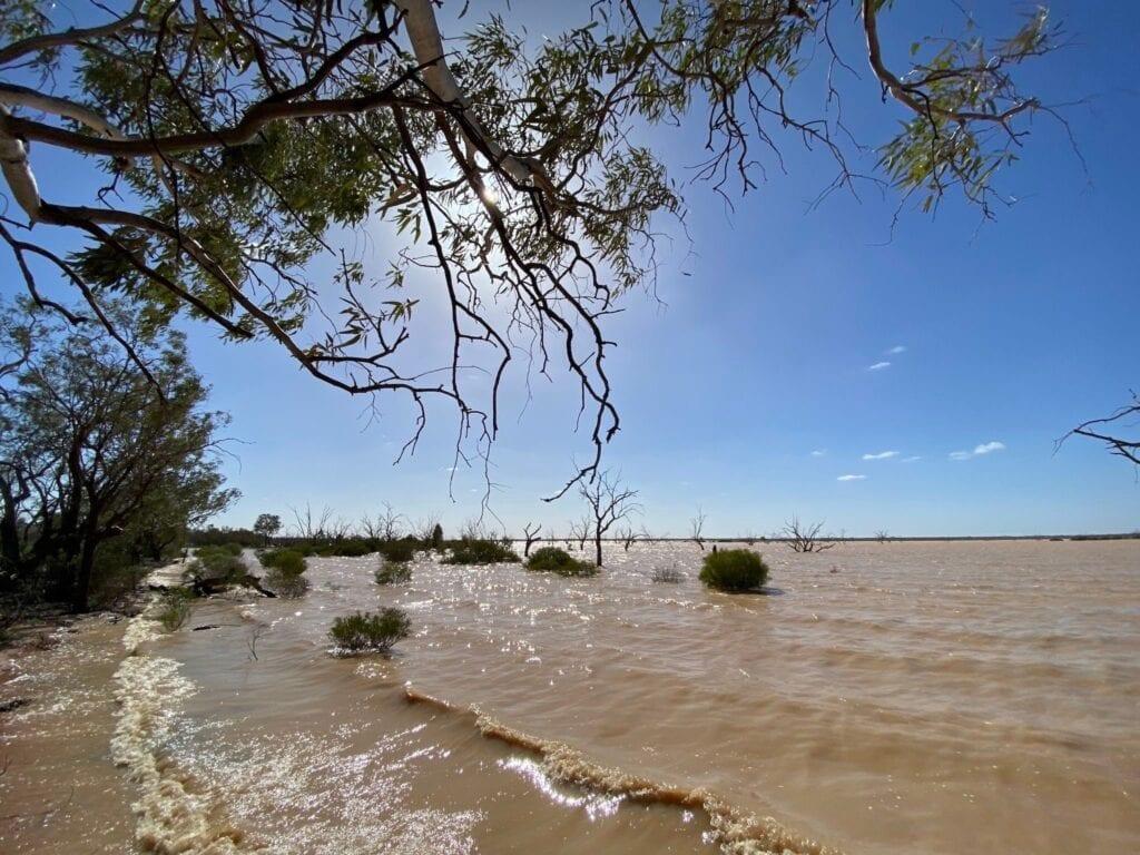 Waves lapping the shore of Lake Pinaroo, Sturt National Park NSW.