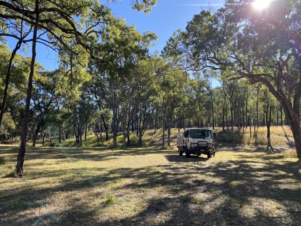 Top Moffatt campground at Mount Moffatt, Carnarvon Gorge National Park, QLD.