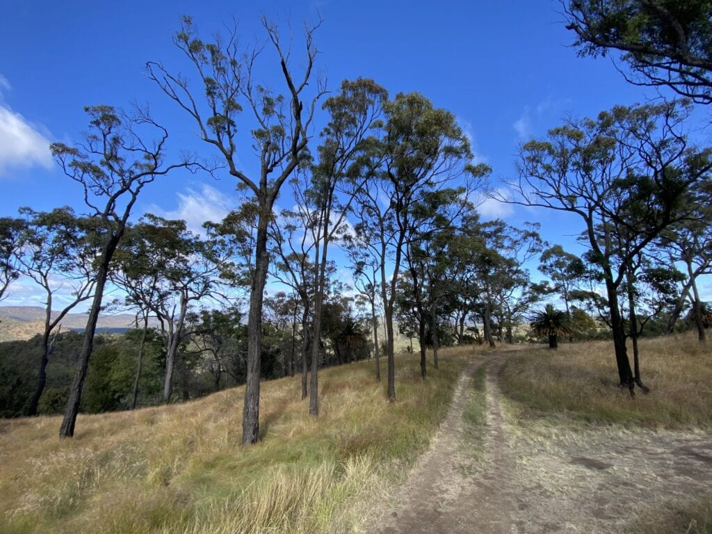 The panoramic view from the Rotary Shelter Shed campground at Mount Moffatt, Carnarvon Gorge National Park, QLD.