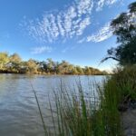The Paroo River in Currawinya National Park QLD.