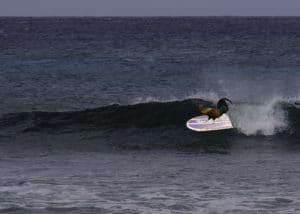 Kauai Surf Chicken 2