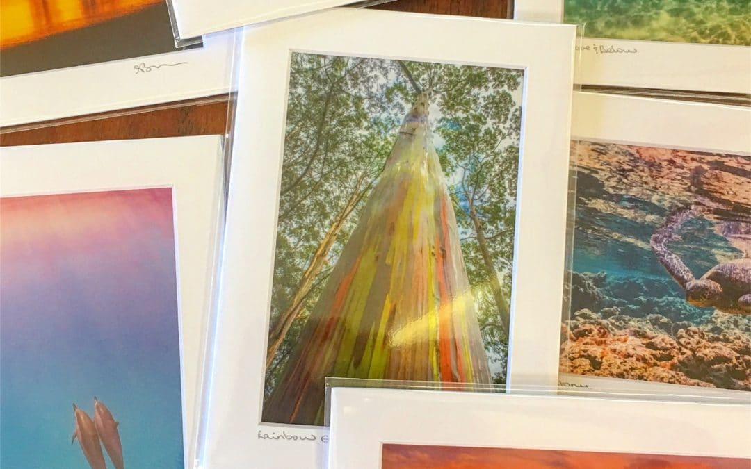 Inventory Clearance on select 5″x7″ and 11″x14″ matted prints