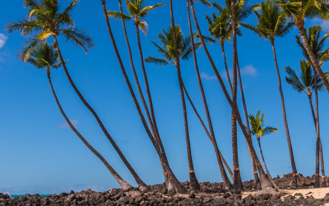 March Sale at Hawaii Ocean Photography