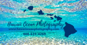 Hawaii Ocean Photography