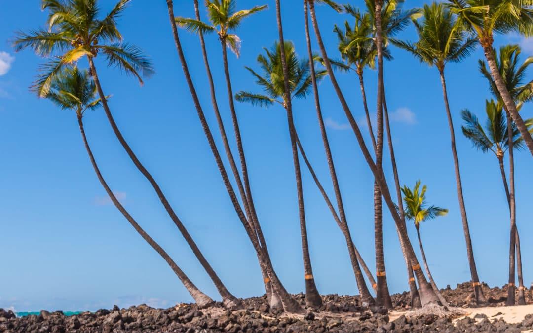 April Special at Hawaii Ocean Photography