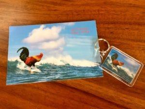 Surf Chicken - Hawaii Ocean Photography