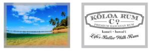 Keychain - Hawaii Ocean Photography