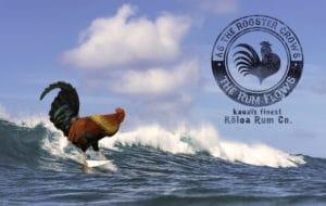 Postcard - Hawaii Ocean Photography