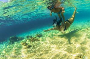 Shanti and Sol swim