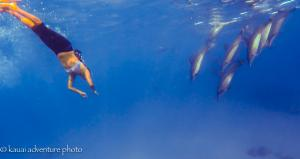 Shanti and dolphins