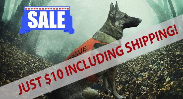 Big Savings for the Dog Lover in Your Life
