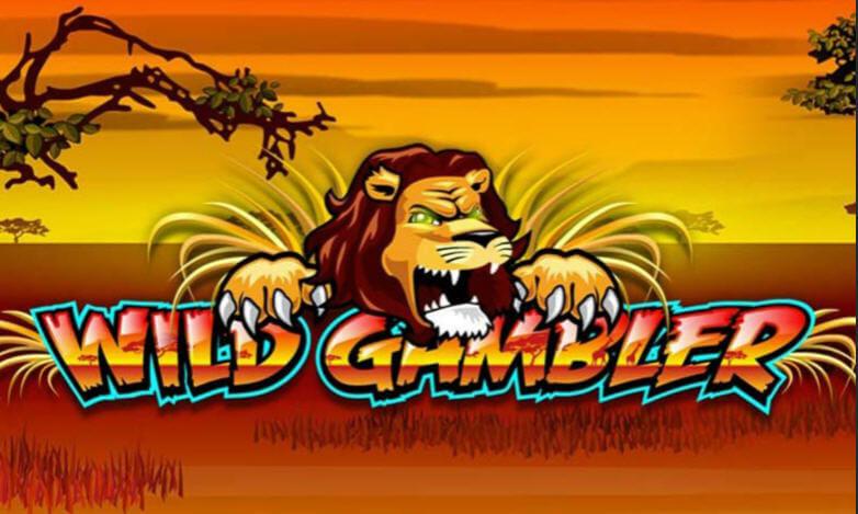 wild gambler slot game