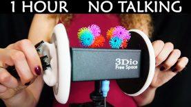 ASMR Ear Cleaning Sounds, Floam, Bunchems, Mascara Wands, Playdough Binaural 3Dio