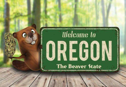 Oregon beaver