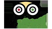 TripAdvisor-Logo 100