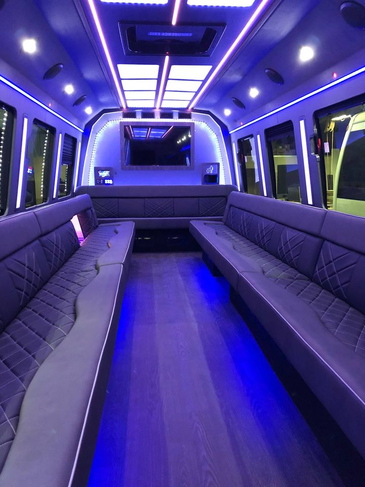 25-29 passenger limo bus