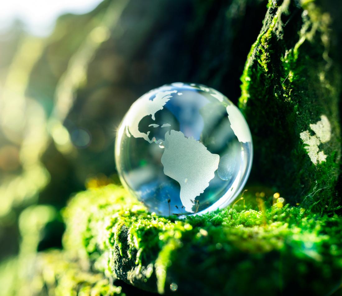 COP 25 : L'occasion de réaffirmer le leadership du Québec