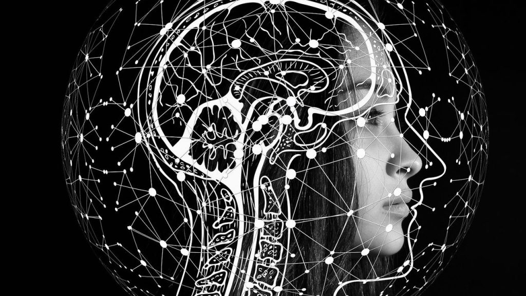 Gemi Bertran's Blog: Hypothalamus Bitch