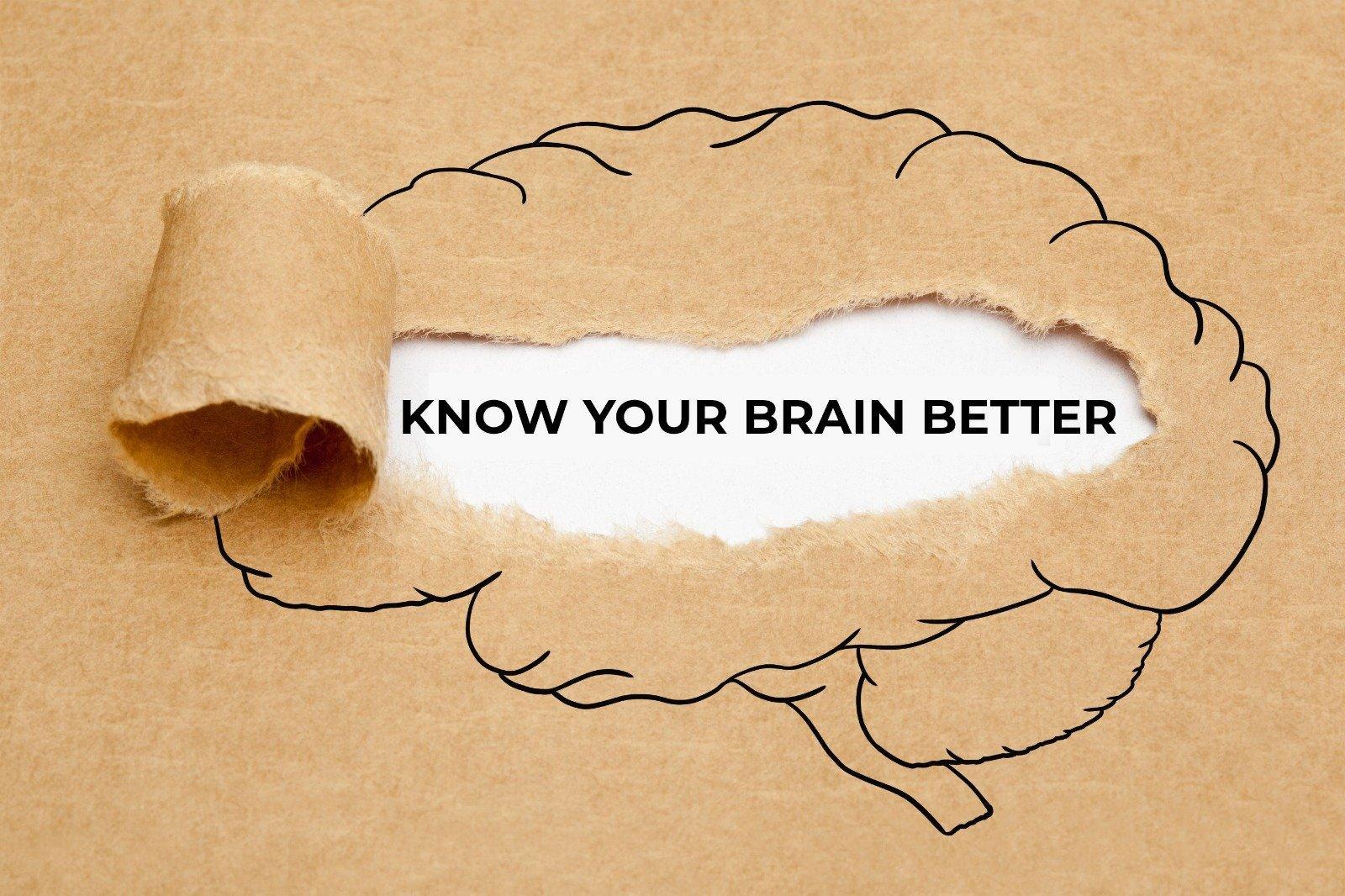 Gemi Bertran's Blog: Mental Health Month: Know your Brain Better