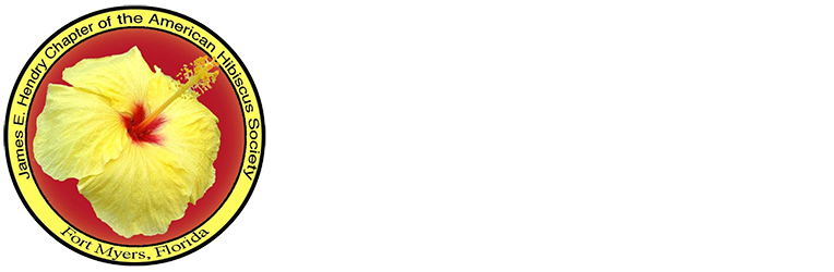 James E. Hendry Chapter Hibiscus
