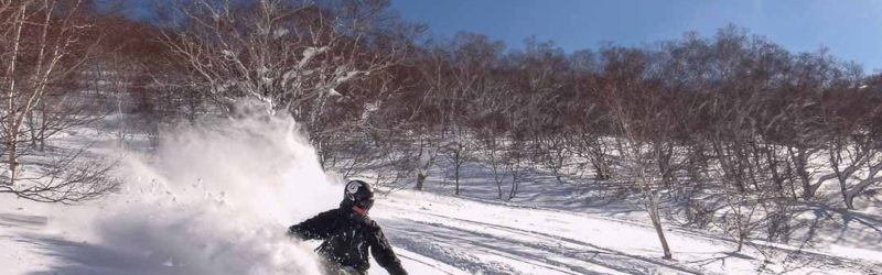 Snow Surf Japan - Powder Board Rental
