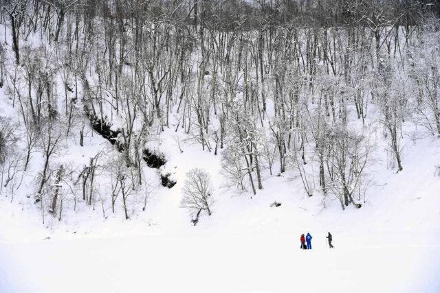 Niseko Snow Shoe Tour