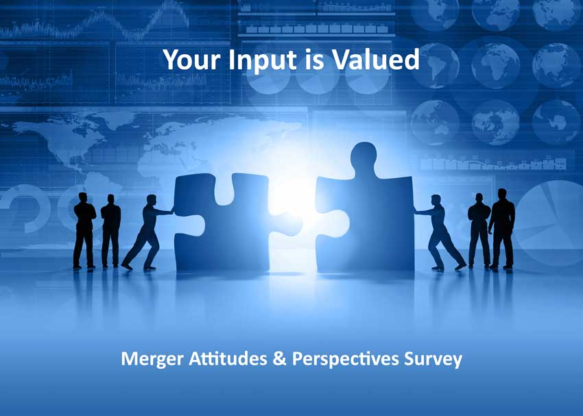 Merger Perspectives Survey