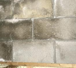 Foundation ResQ   Mold Remediation Services   Dehumidifiers   Basement Waterproofing