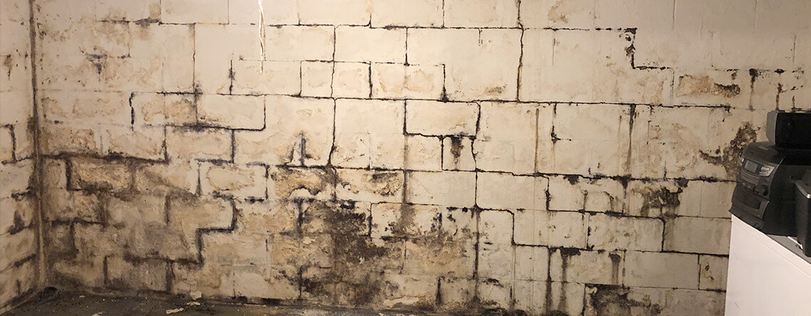 Foundation ResQ | Epoxy Wall Coatings | Mold Remediation Services