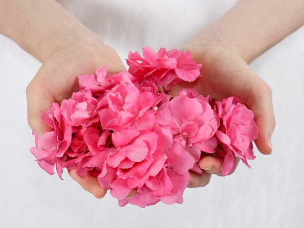 Woman with handful of pink flowers