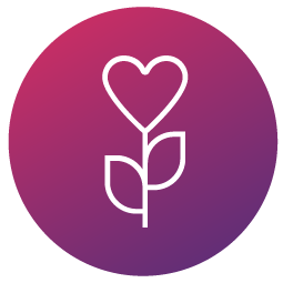 icon with heart like rose flower