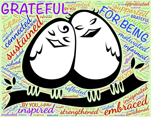 Gratitude is Transformative…and NOT Just During the Thanksgiving Holiday