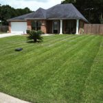 Beautiful Lawn Care in Denham Sprins, La. 70726