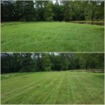 Beautiful Lawn cut in Denham Springs, La. 70726