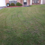 Lawn Care in Denham Springs, La. 70726
