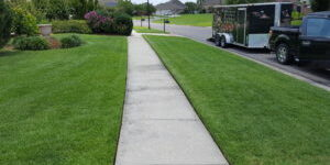Very nice lawn care. Front yard is cut using a push mower.