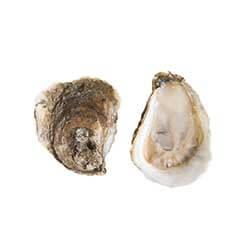 Alaska Gold Oysters