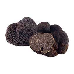 Black Winter Truffle