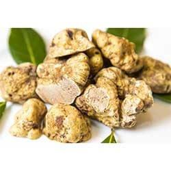 Italian Fresh White Truffles