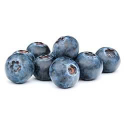 Oregon Coastal Huckleberries