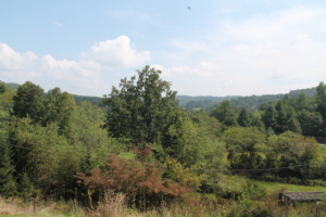farms for sale in nc