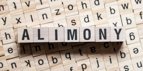 the word of ALIMONY on building blocks