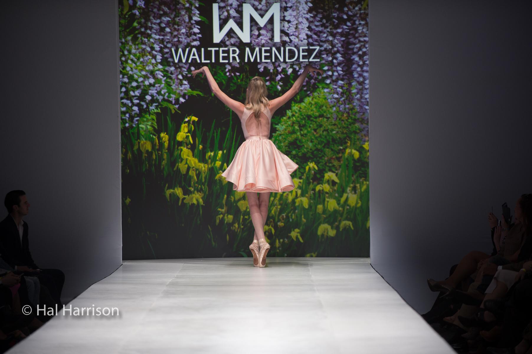 2015 Walter Mendez 21