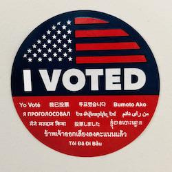 I Voted Matt Albert