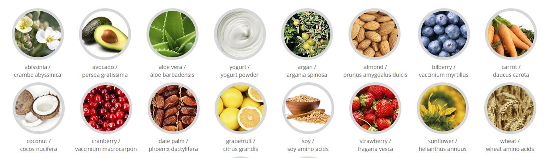 milk_shake ingredients
