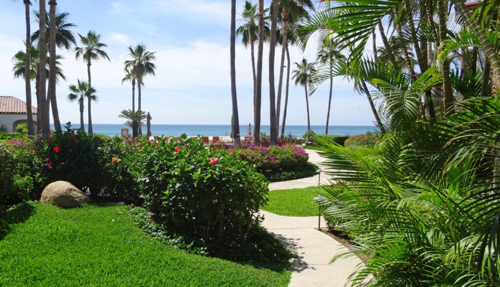 Executive Condos Vacation Rentals