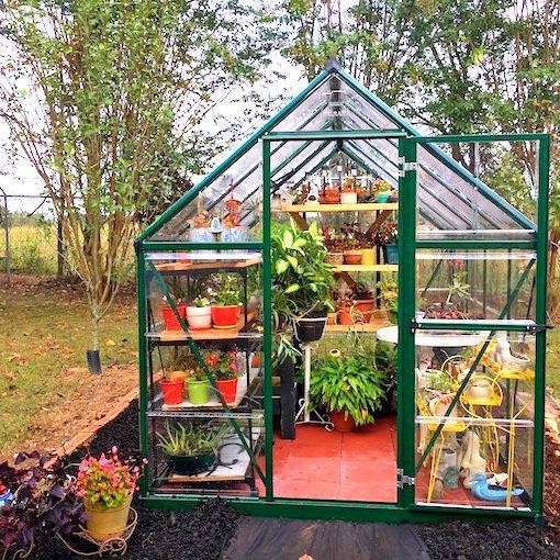 photo of greenhouse in backyard garden