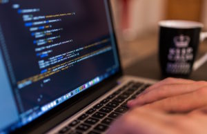 what a software developer brings to the table